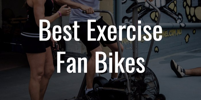 Best Exercise Fan Bikes